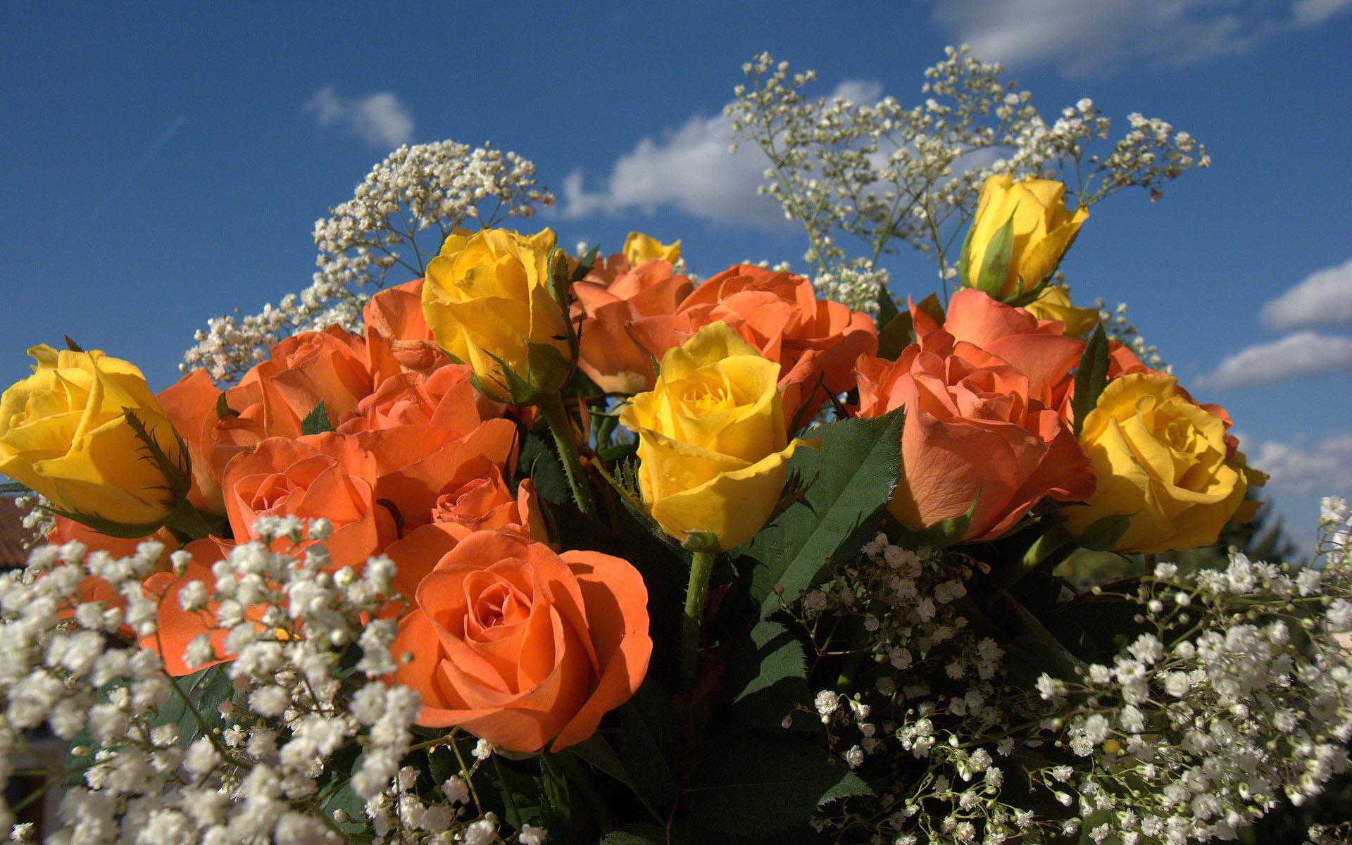 Résultat d'images pour Jolis bouquets de mimosa et roses